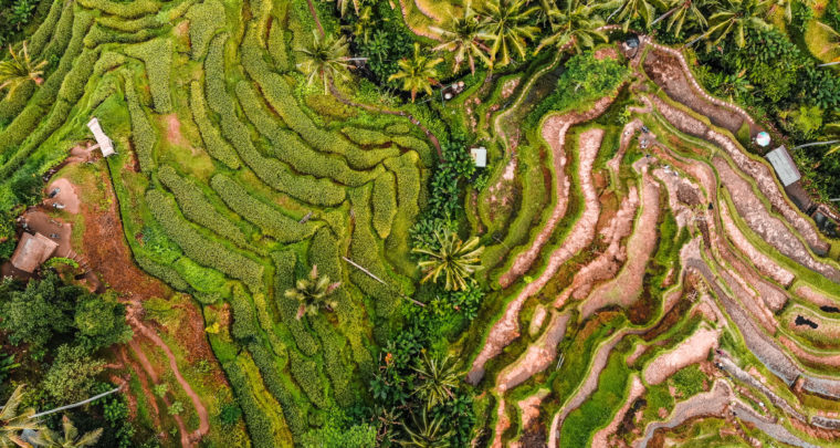 REISROUTE: Rondreis Indonesië - route voor drie maand