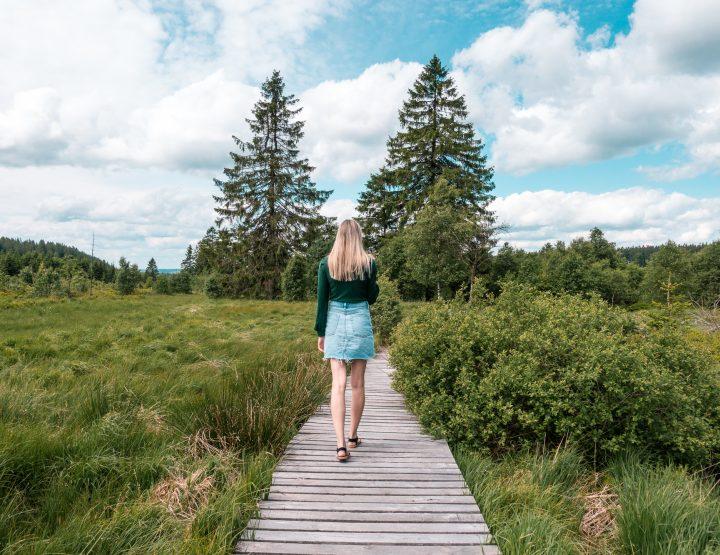 Weekendje weg: Schoon stukske natuur in en rondom de Hoge Venen