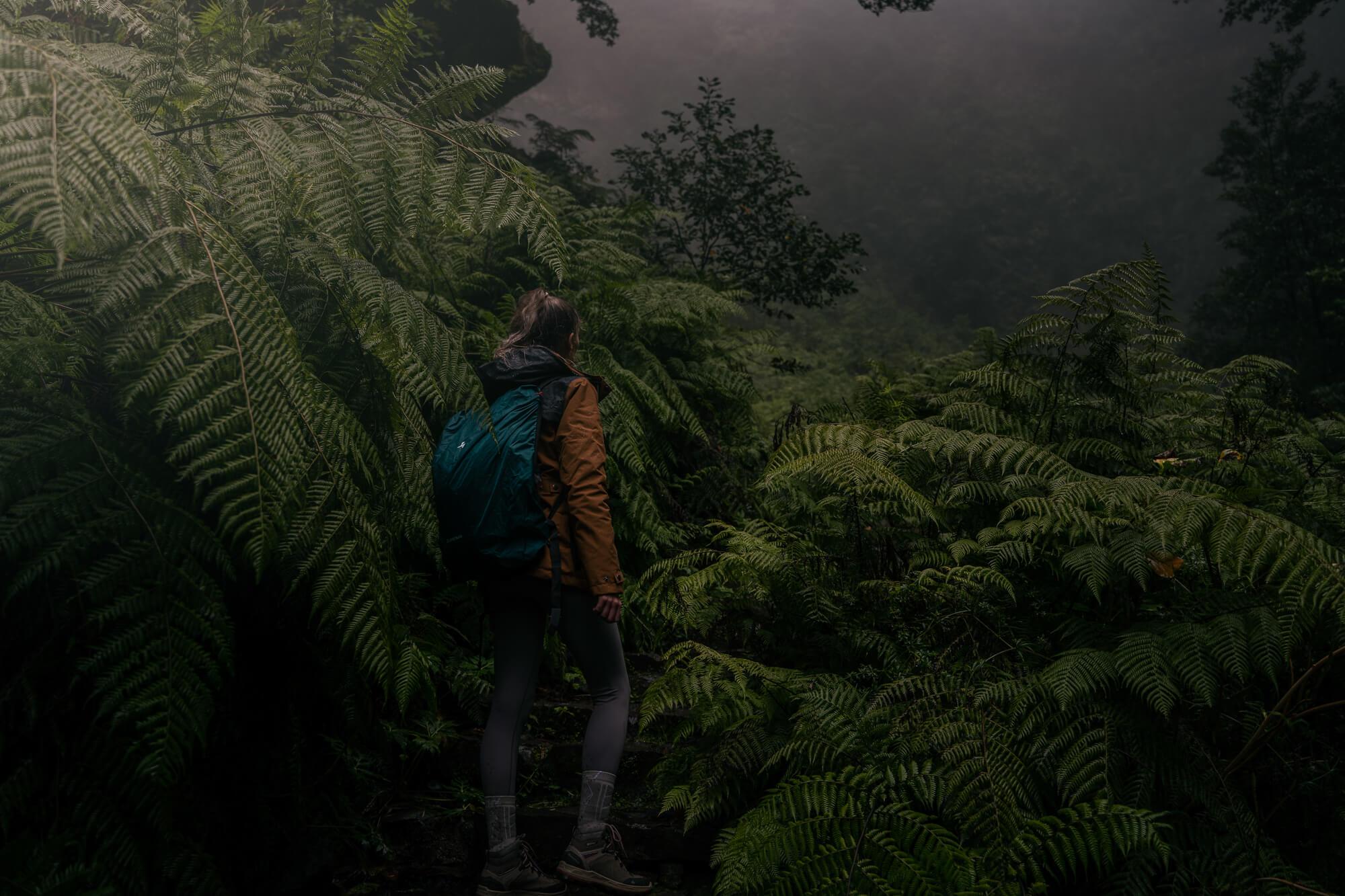 Levada Caldeirão Verde // Caldeirão Do Inferno trail wandeling